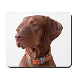 "Vizsla head shot of ""Tru"" Mousepad"