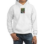 Valley Cat 42 Hooded Sweatshirt