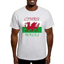 Cute Welsh T-Shirt