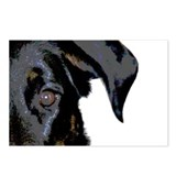 Beauceron Graphic Postcards (Package of 8)