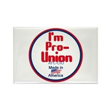 Pro Union Rectangle Magnet (10 pack)
