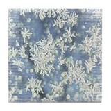 Frost on glass Drink Coasters