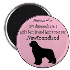 Girls Best Friend Magnet
