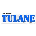 New Orleans Streets Sticker (Bumper 50 pk)