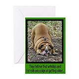 Bulldog birthday Greeting Cards