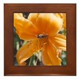 Busy Bee Framed Tile
