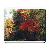 New England Foliage Mousepad