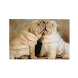 SHAR PEI PUPPY LOVE Rectangle Magnet