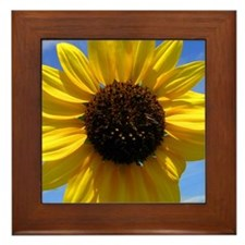 Sunflower Framed Tile