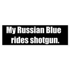 My Russian Blue rides shotgun (Bumper Sticker)