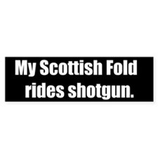 My Scottish Fold rides shotgun (Bumper Sticker)