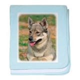 Swedish Vallhund 9J100D-11 baby blanket