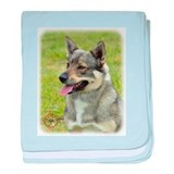 Swedish Vallhund 9P31D-04 baby blanket