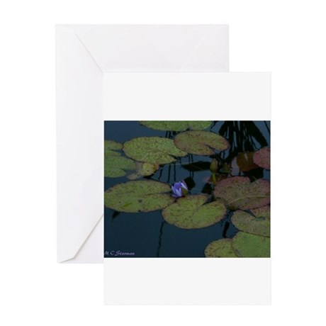 Waterlily, Colorful, Greeting Card