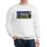 Starry / 2 Affenpinschers Sweatshirt