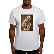 Meerkat Ash Grey T-Shirt