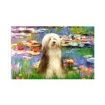 Lilies / Bearded Collie 35x21 Wall Decal