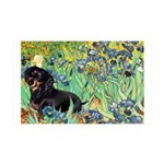 Irises & Dachshund (BT4) 35x21 Wall Decal