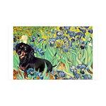 Irises & Dachshund (BT4) 35x21 Wall Decal