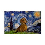 Starry / Dachshund 35x21 Wall Decal