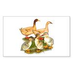 Buff Duck Family Sticker (Rectangle 50 pk)