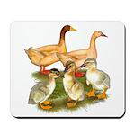 Buff Duck Family Mousepad