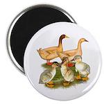 Buff Duck Family Magnet