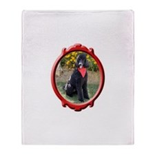 Classy Poodle Throw Blanket