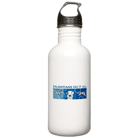 Dals Do It All Stainless Water Bottle 1.0L