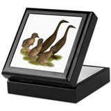Chocolate Runner Duck Family Keepsake Box