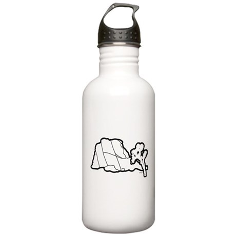 Jtree and Intersection Rock Stainless Water Bottle