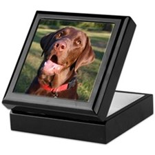 Chocolate Lab Hinged Keepsake Box