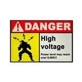 High Voltage Magnet
