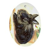 Lionhead rabbit Ornament (Oval)