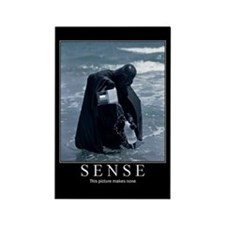 DeMotivational - Sense - Magnet