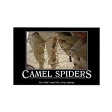DeMotivational - Camel Spiders - Magnet