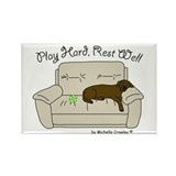 Chocolate Lab - Play Hard Rectangle Magnet