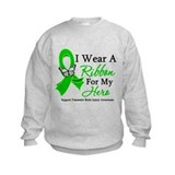 TBI I Wear A Ribbon Hero Sweatshirt