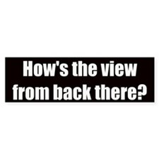 How's the view? (Bumper Sticker)