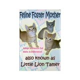 Feline Foster Mom Rectangle Magnet