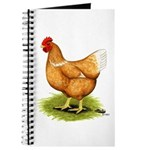 Golden Sex-link Hen Journal