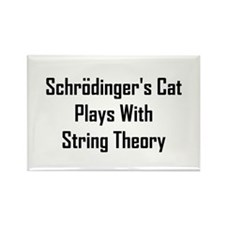 Schrodinger's Cat Plays Rectangle Magnet