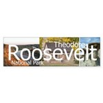 ABH Theodore Roosevelt National Park Sticker (Bump