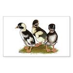 Emery Penciled Runner Ducklin Sticker (Rectangle 1