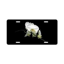 Pretty Phalaenopsis Aluminum License Plate
