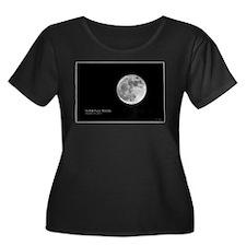 Super Moon - 3/19/2011 T
