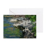 On The Edge Greeting Cards (Pk of 10)