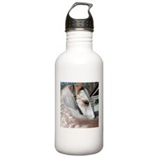 Red Roan Horse Eyes Water Bottle