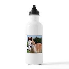 Strawberry Roan Foal Water Bottle