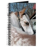 Roan Walking Horse Journal